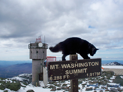 Marty on the Mount Washington Summit sign.