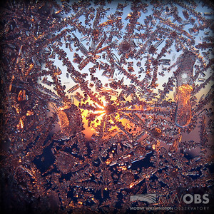 Ice patterns on a window at sunset.